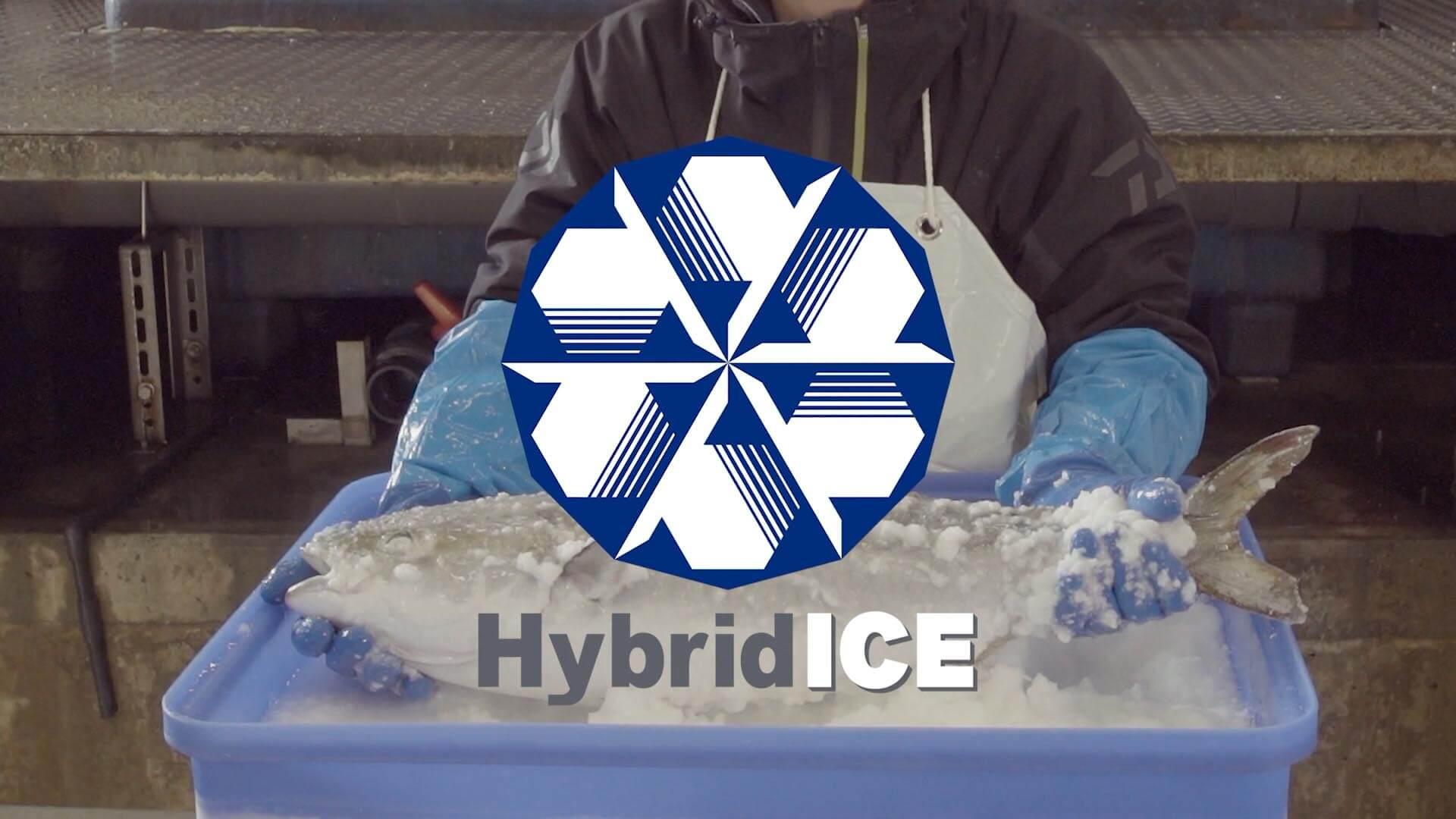 鮮魚の高鮮度・長期保存を実現した次世代製氷機「ハイブリッドアイス」PR動画制作事例